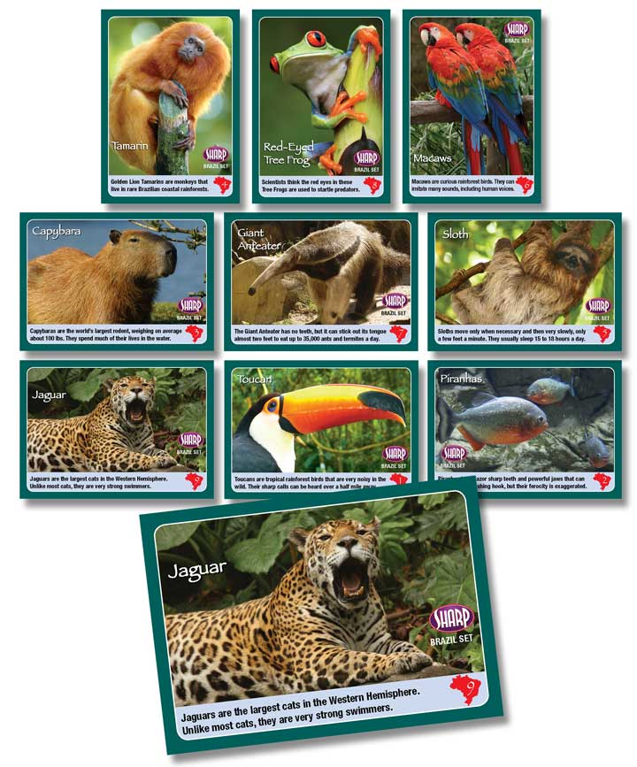 Each set has 9 collectable cards. ZooZingo card sets detail animals from China, India, Brazil, and more! There are USA sets as well.